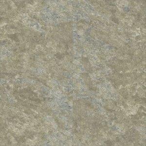 Aspecta Five Pyrite Lichen 5759514