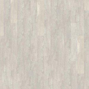 Mflor 25-05 Authentic Oak Chinkapin