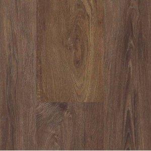 Mflor 25-05 Authentic Oak Scarlet Oak