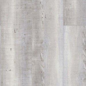 Mflor 20-03 Woburn Woods Delamere Pine